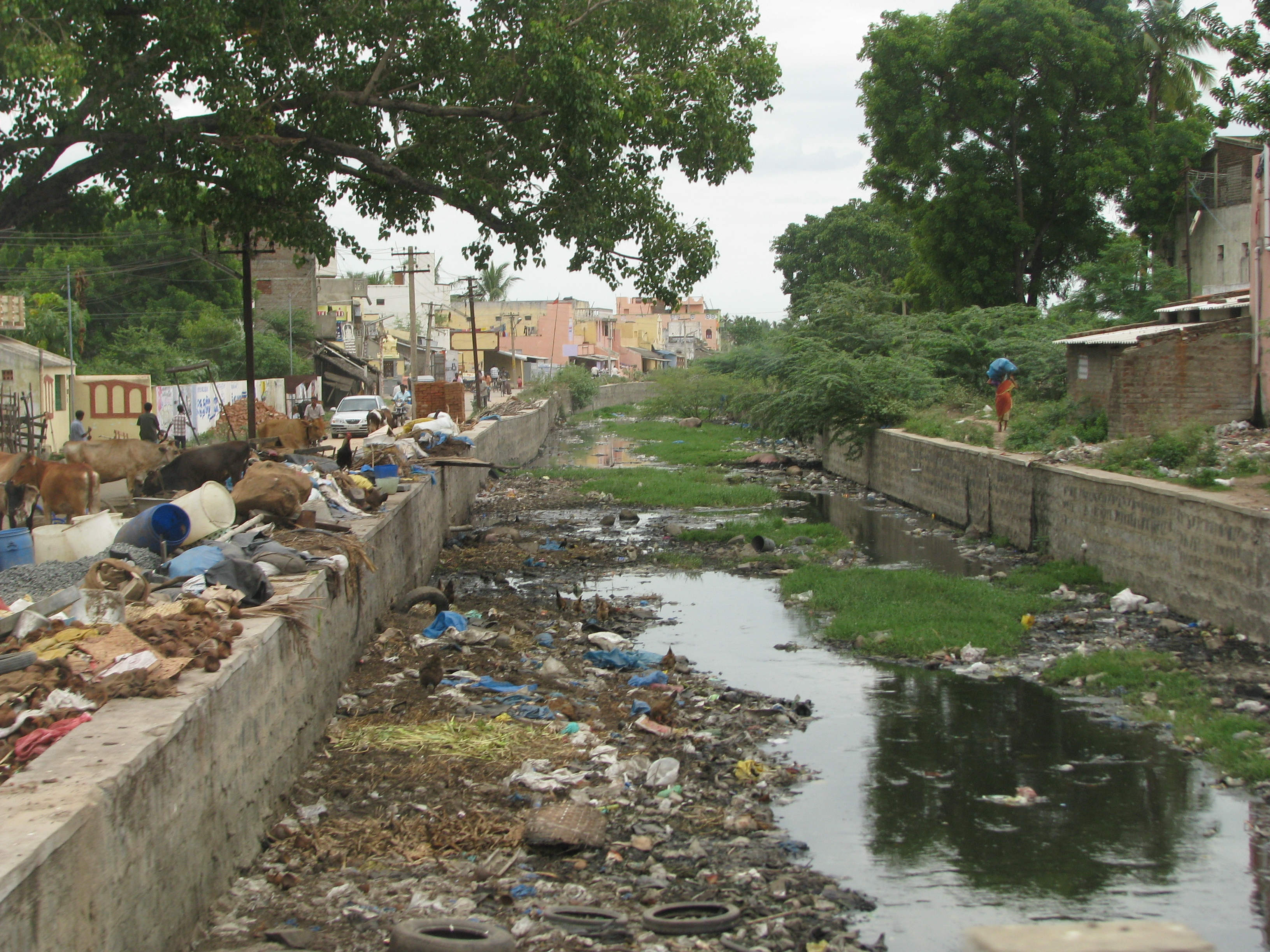 environmental problems of mumbai Environmental problems of mumbai mumbai- the name conjures up images of high skyscrapers, wide roads, the sea-kissed marine drive, a land of opportunity and enterprise.